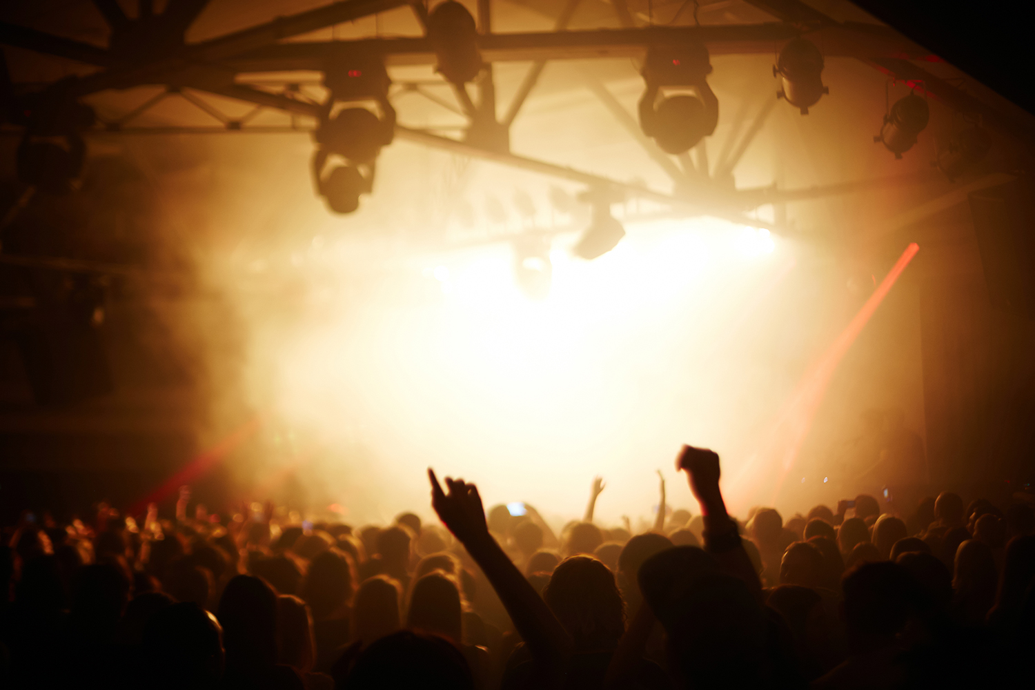 Crowd of people enjoying concert in night club